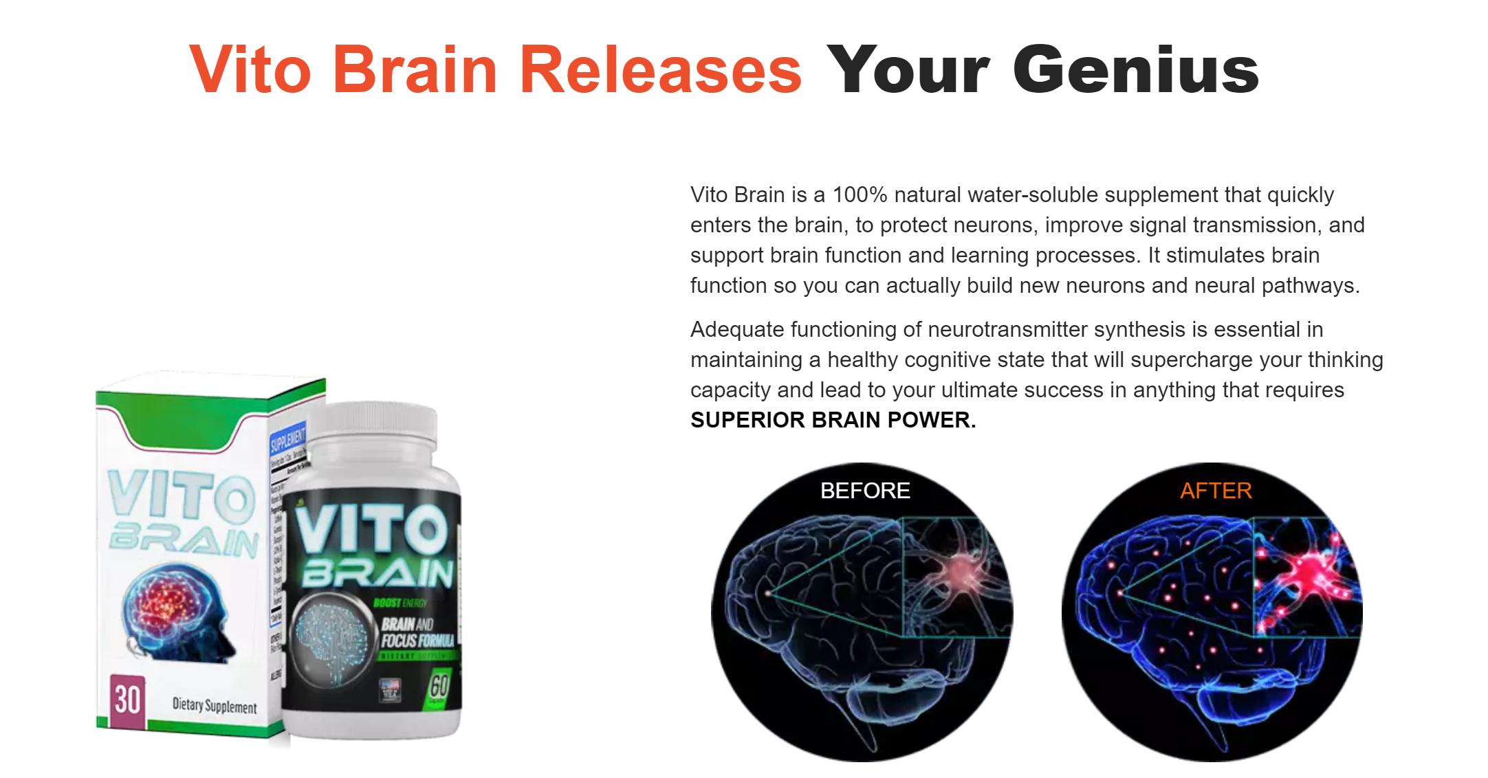 vita brain buy